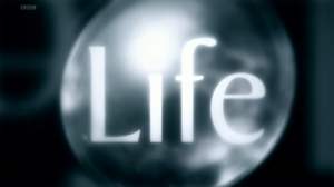 Life_title_card